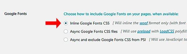 Google Fonts del plugin Fast Velocity Minify